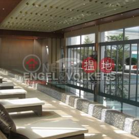 鴨脷洲兩房一廳筍盤出售|住宅單位|南灣(Larvotto)出售樓盤 (EVHK14023)_0