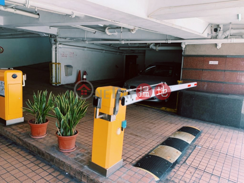 G/F, Indoor Carpark Space Blessings Garden - 95 Robinson Road (Rent: $3800, Buy: $3M)|Blessings Garden(Blessings Garden)Rental Listings (JETHR-6379891238)_0