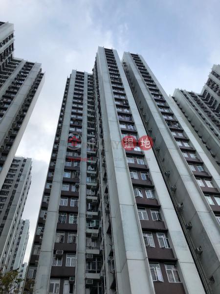 天山閣 (7座) ((T-07) Tien Shan Mansion Kao Shan Terrace Taikoo Shing) 太古|搵地(OneDay)(1)