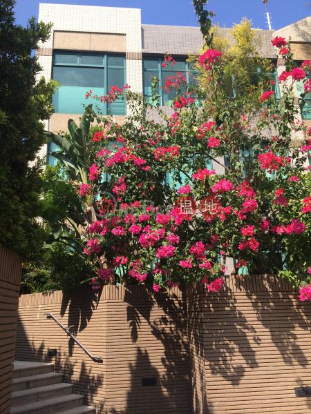 旭逸居1座 (Stanford Villa Block 1) 赤柱|搵地(OneDay)(1)