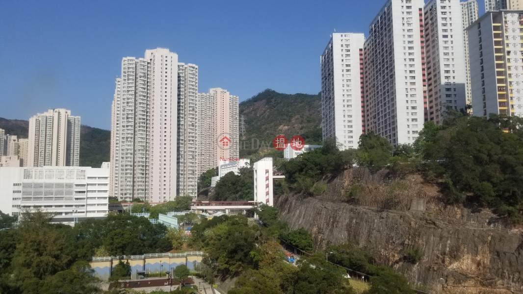 華達工業中心|葵青華達工業中心(Wah Tat Industrial Centre)出租樓盤 (TINNY-2789893990)