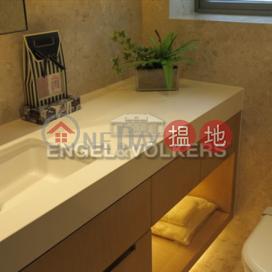 2 Bedroom Flat for Rent in Sheung Wan|Western DistrictSOHO 189(SOHO 189)Rental Listings (EVHK38479)_0