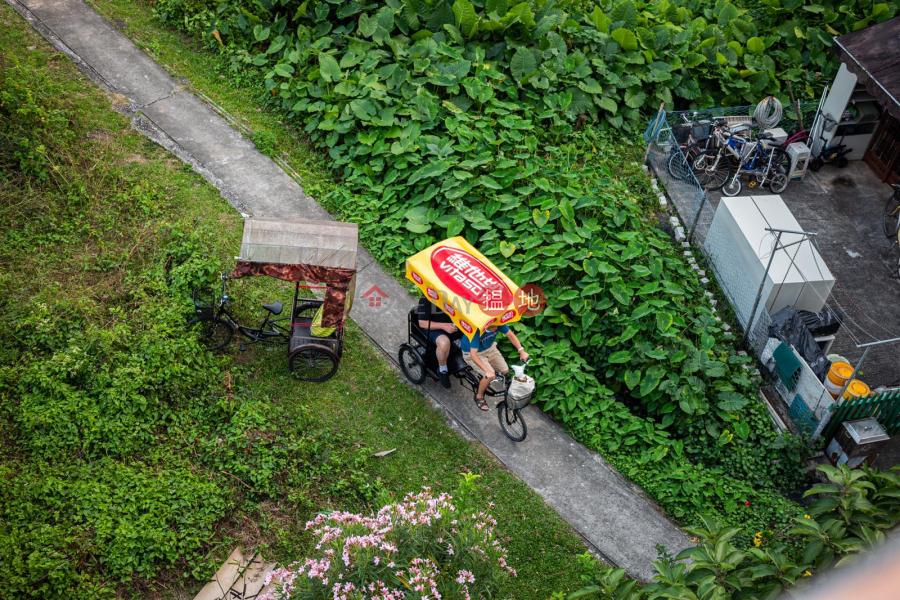 鹿地塘村屋 (Luk Tei Tong Village House) 梅窩|搵地(OneDay)(5)