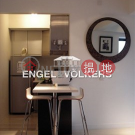 Studio Flat for Sale in Soho|Central DistrictRich View Terrace(Rich View Terrace)Sales Listings (EVHK14575)_3