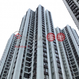(T-48) Hoi Sing Mansion On Sing Fai Terrace Taikoo Shing|海星閣 (48座)