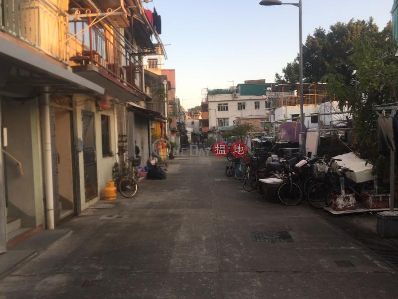 Property on Fu Peng Street (Property on Fu Peng Street) Peng Chau 搵地(OneDay)(4)