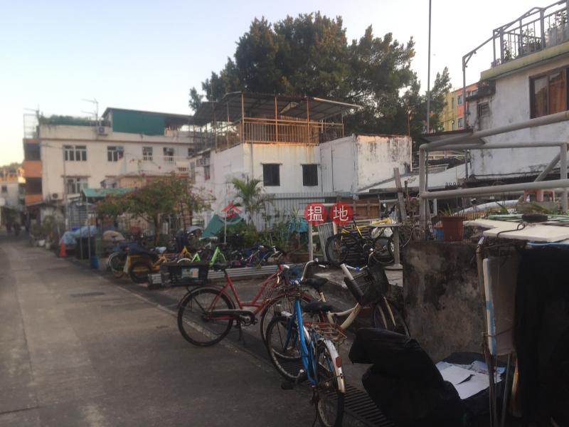Property on Fu Peng Street (Property on Fu Peng Street) Peng Chau 搵地(OneDay)(5)
