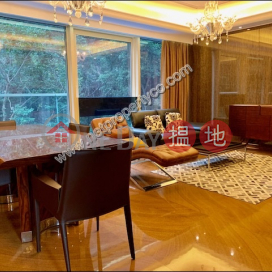 Nicely Decorated Apartment for Rent in Mid-Levels E