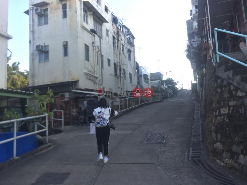聖家路村屋 (Village House on Shing Ka Road) 坪洲|搵地(OneDay)(1)