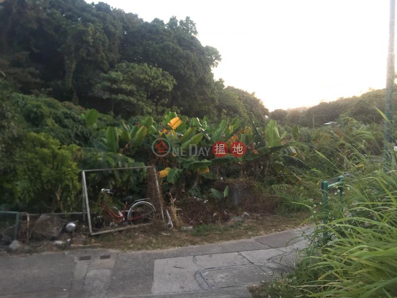 Tai Lung Chuen Village House (Tai Lung Chuen Village House) Peng Chau|搵地(OneDay)(5)