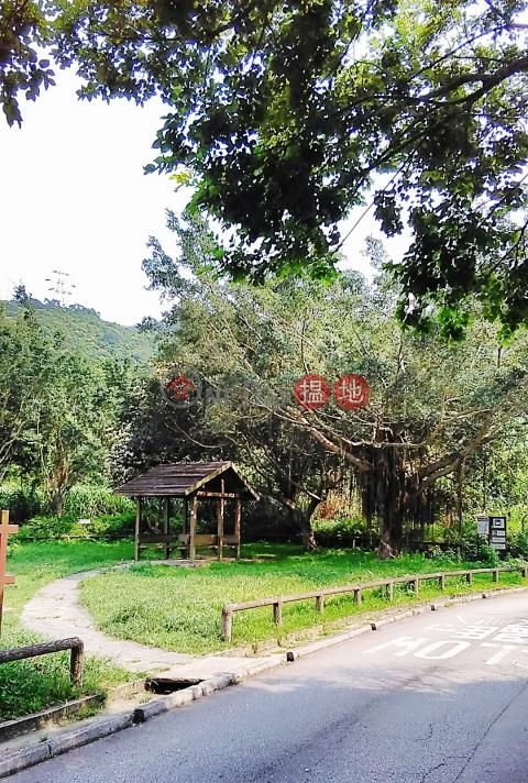 打鐵屻村 世外桃園 市區近在咫尺|打鐵屻村屋(Ta Tit Yan Village House)出租樓盤 (002174)_0