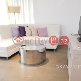 Elegant 1 bedroom with balcony   Rental