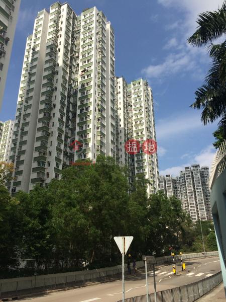 南豐新邨8座 (Nan Fung Sun Chuen Block 8) 鰂魚涌|搵地(OneDay)(1)
