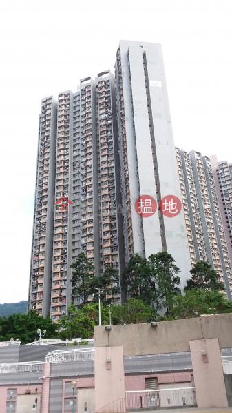利安邨 利興樓 (Lee On Estate, Block 1 Lee Hing House) 馬鞍山 搵地(OneDay)(2)