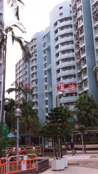 白田邨翠田樓 (Tsui Tin House, Pak Tin Estate) 石硤尾|搵地(OneDay)(1)