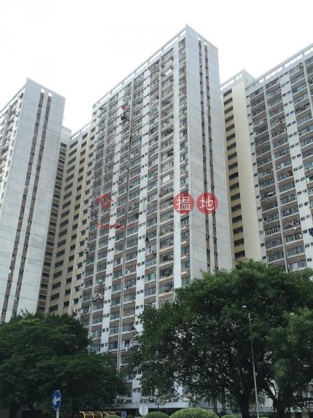 大元邨 泰怡樓 B座 (Tai Yuen Estate Block B Tai Yee House) 大埔 搵地(OneDay)(1)
