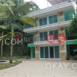 Stylish house with rooftop, terrace & balcony | Rental|Wo Tong Kong Village House(Wo Tong Kong Village House)Rental Listings (OKAY-R293722)_0