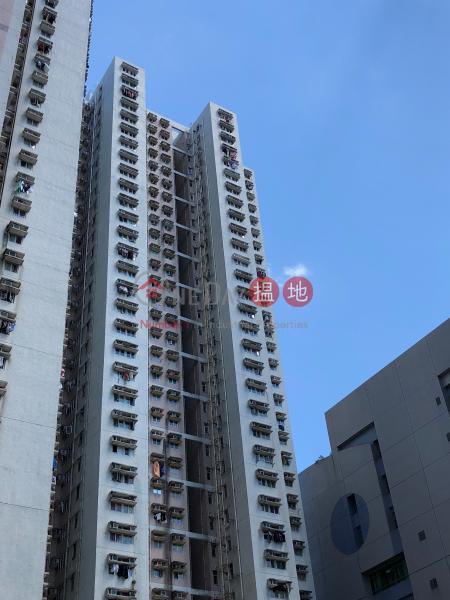 樂軒臺 1座 (Block 1 Lok Hin Terrace) 柴灣|搵地(OneDay)(1)