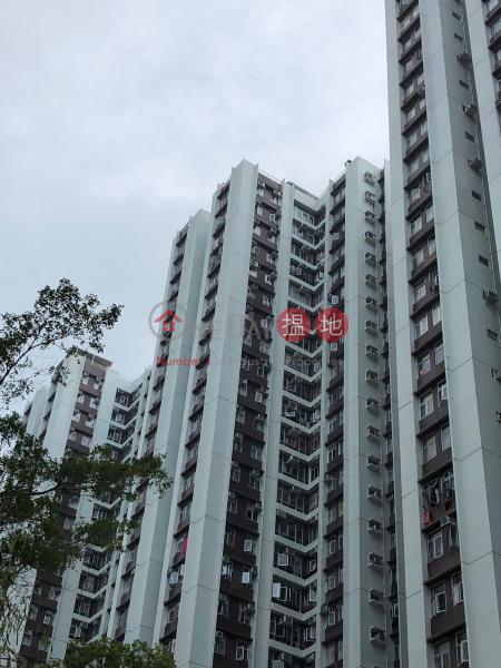 金星閣 (52座) ((T-52) Kam Sing Mansion On Sing Fai Terrace Taikoo Shing) 太古|搵地(OneDay)(1)