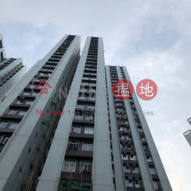 (T-46) Hang Sing Mansion On Sing Fai Terrace Taikoo Shing|恆星閣 (46座)