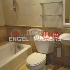 3 Bedroom Family Flat for Sale in Mid Levels West|Robinson Place(Robinson Place)Sales Listings (EVHK5557)_0