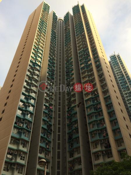 愛東邨 愛平樓 (Oi Tung Estate Oi Ping House) 筲箕灣 搵地(OneDay)(2)