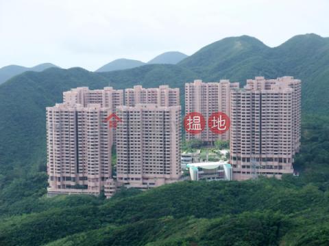 大潭開放式筍盤出租|住宅單位|南區陽明山莊 摘星樓(Parkview Heights Hong Kong Parkview)出租樓盤 (EVHK31578)_0