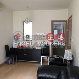 3 Bedroom Family Flat for Sale in Sai Ying Pun|Island Crest Tower1(Island Crest Tower1)Sales Listings (EVHK36190)_0