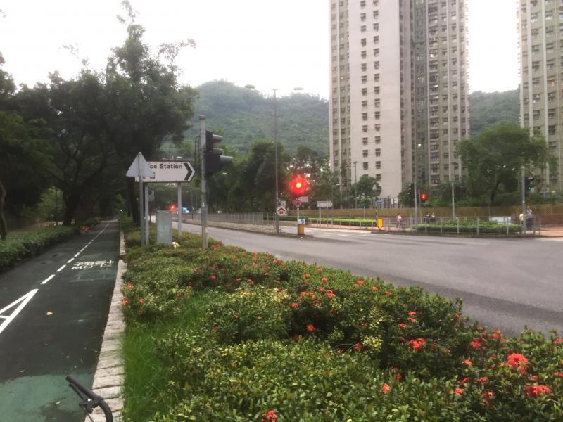 Hang Hau