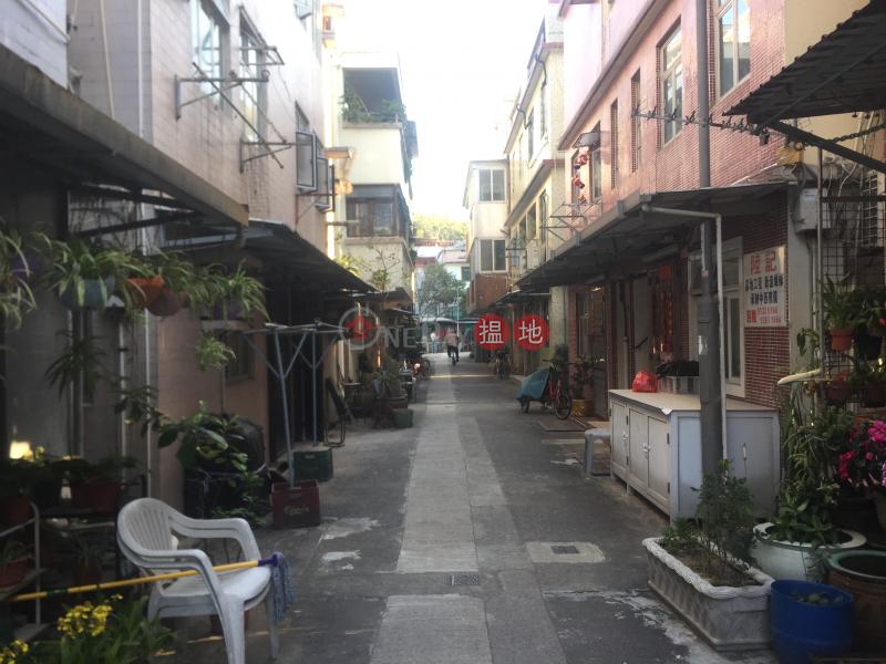Property on Wing Chun Street (Property on Wing Chun Street) Peng Chau 搵地(OneDay)(3)