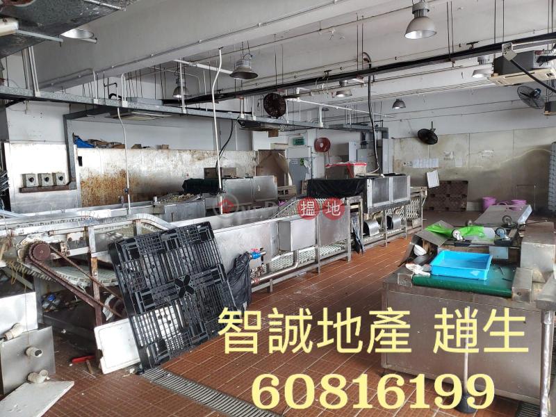 葵涌 - 宏達工業中心 出租 洗碗工場|宏達工業中心(Vanta Industrial Centre)出租樓盤 (00099477)
