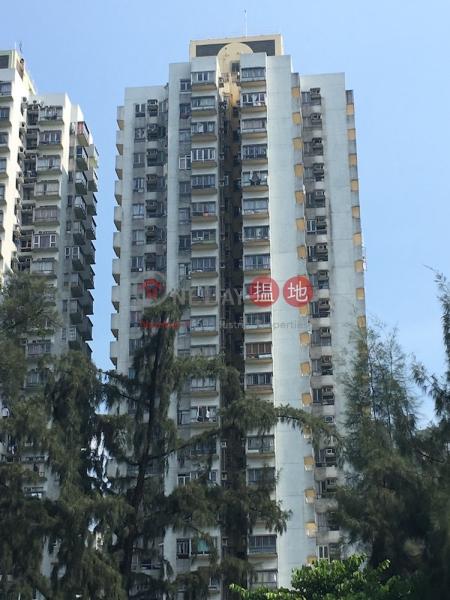 Block 21 Tai Po Centre Phase 3 (Block 21 Tai Po Centre Phase 3) Tai Po|搵地(OneDay)(1)