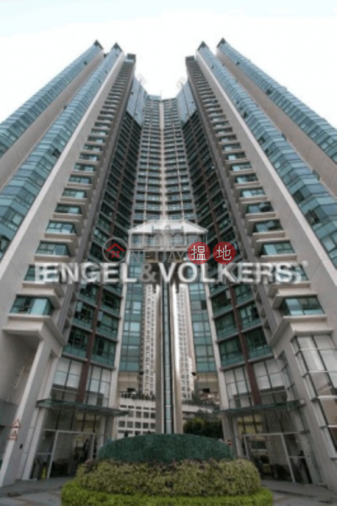 Studio Flat for Rent in Mid Levels West|Western District80 Robinson Road(80 Robinson Road)Rental Listings (EVHK100883)_0