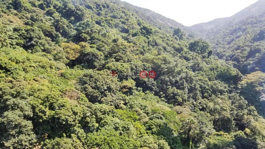 Serenade | Low | Residential | Rental Listings | HK$ 42,000/ month
