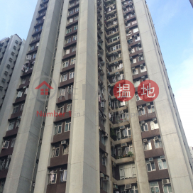 (T-16) Yee Shan Mansion Kao Shan Terrace Taikoo Shing|怡山閣 (16座)