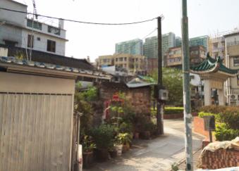 大圍村的奧祕-村屋-丁屋 (image 3)