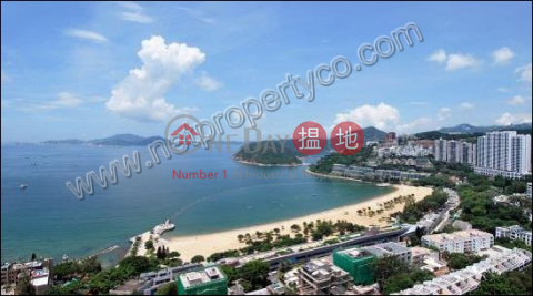 The Lily - Repulse Bay|南區淺水灣道129號 3座(Tower 3 The Lily)出租樓盤 (A029370)_0