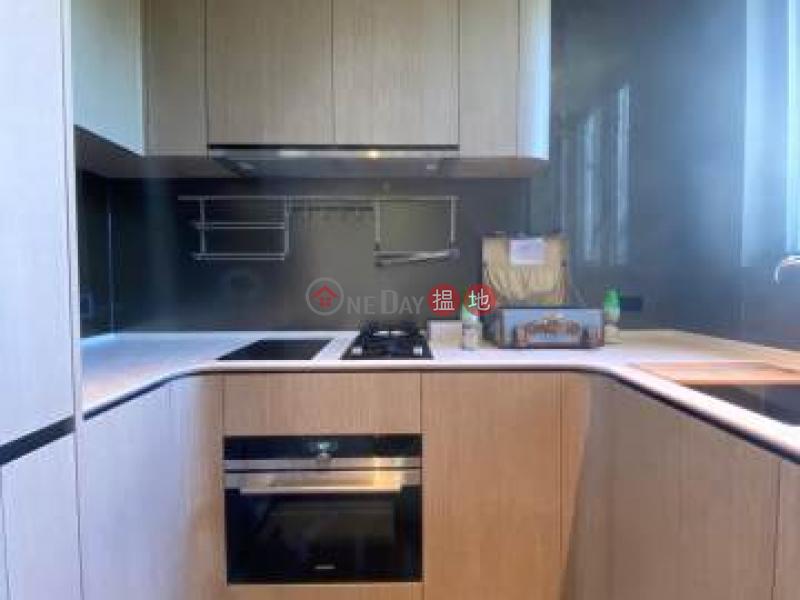 上源 高層-住宅出租樓盤 HK$ 16,500/ 月