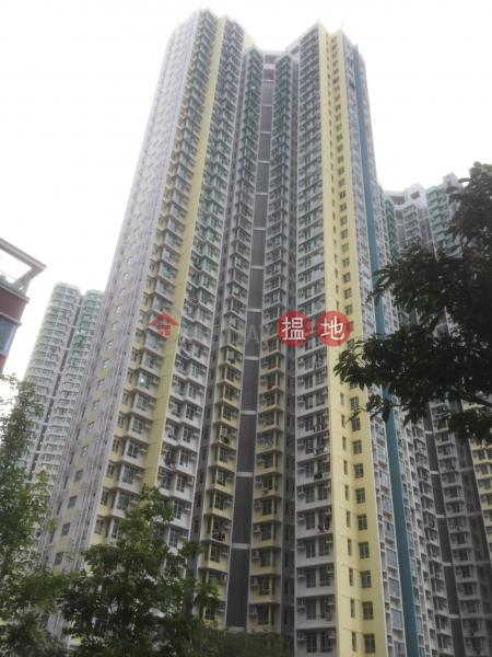 德朗邨德瑤樓 (Tak Yiu House, Tak Long Estate) 九龍城|搵地(OneDay)(2)