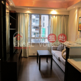 1 Bed Flat for Sale in Mid Levels - West|Western DistrictAll Fit Garden(All Fit Garden)Sales Listings (EVHK18470)_3